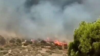 Photo of Φωτιά στην Κερατέα: Εκκενώνεται ο οικισμός Μαρκάτι – Μήνυμα από το 112
