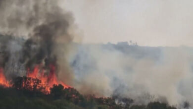 Photo of Προειδοποίηση Καλλιάνου: Εύχομαι να σβήσουν οι φωτιές στην Αττική – Αύριο έρχονται 8 μποφόρ