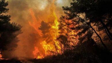 Photo of Συνεχίζεται το θρίλερ στην Τουρκία: Στους έξι οι νεκροί από τις δασικές πυρκαγιές